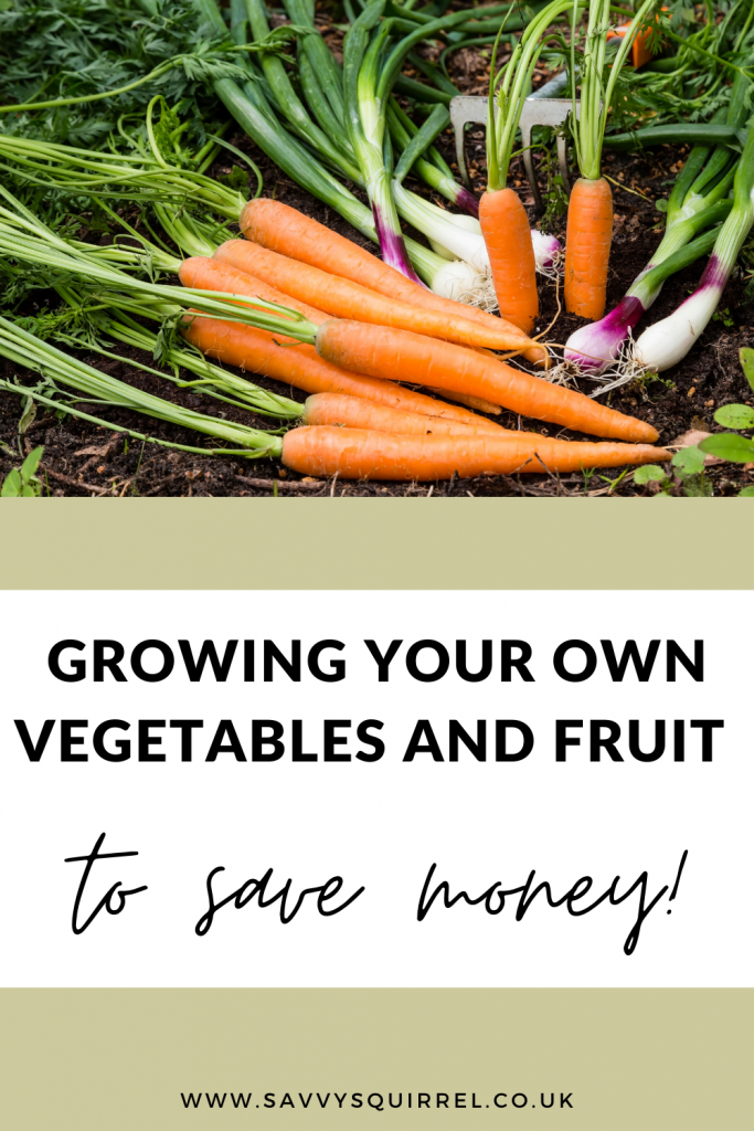 Growing your own vegetables and fruit to save money